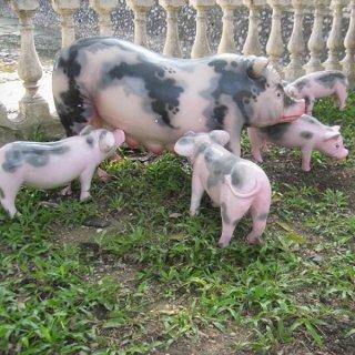 Bộ tượng đàn lợn