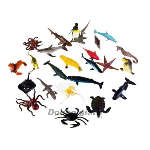 Bộ động vật biển