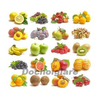 Lô tô các loại quả
